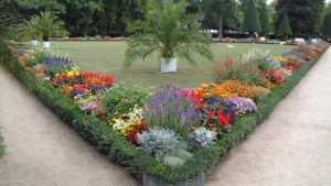 German Flowers